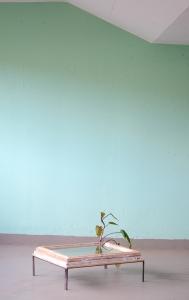 Yolanda-Heintze_See-Your-Roots_Parkhauswand_DSC8557_005